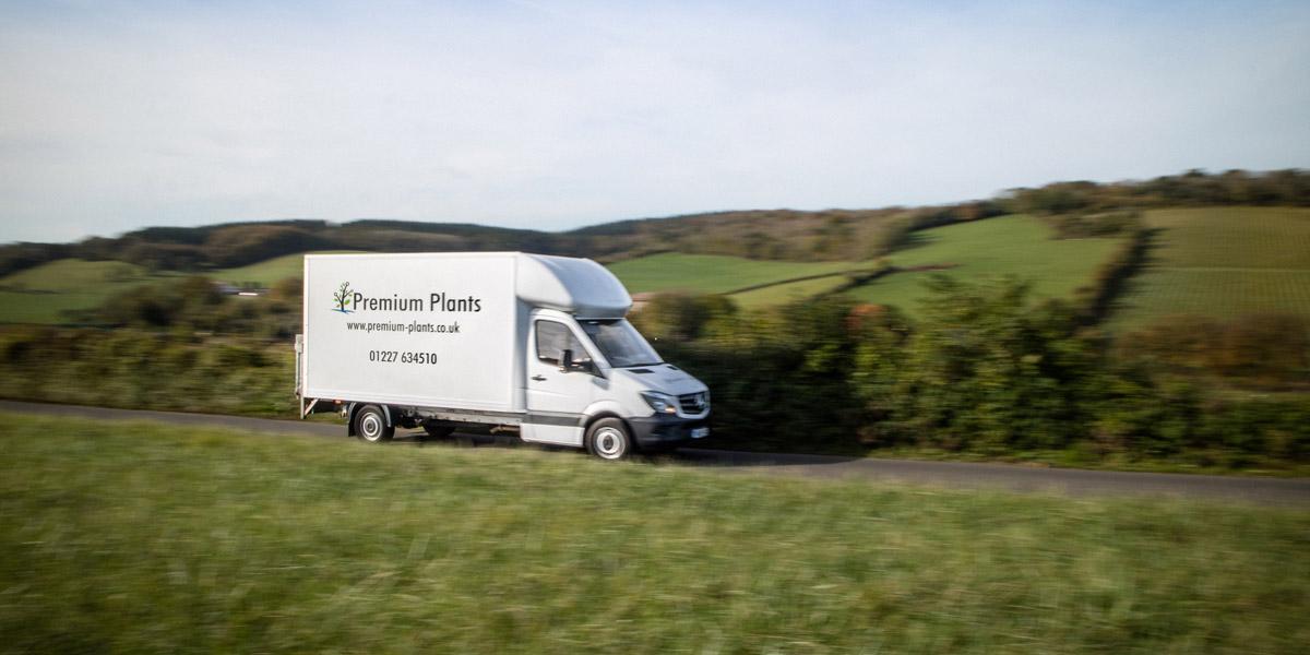 Premium Plants Delivery